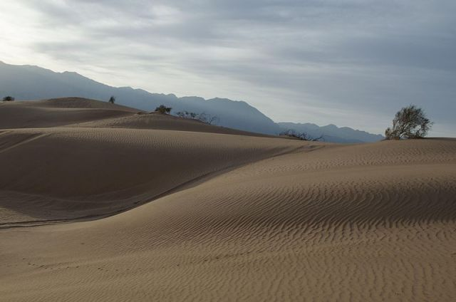 800px-PikiWiki_Israel_31121_Samar_Dunes.jpg